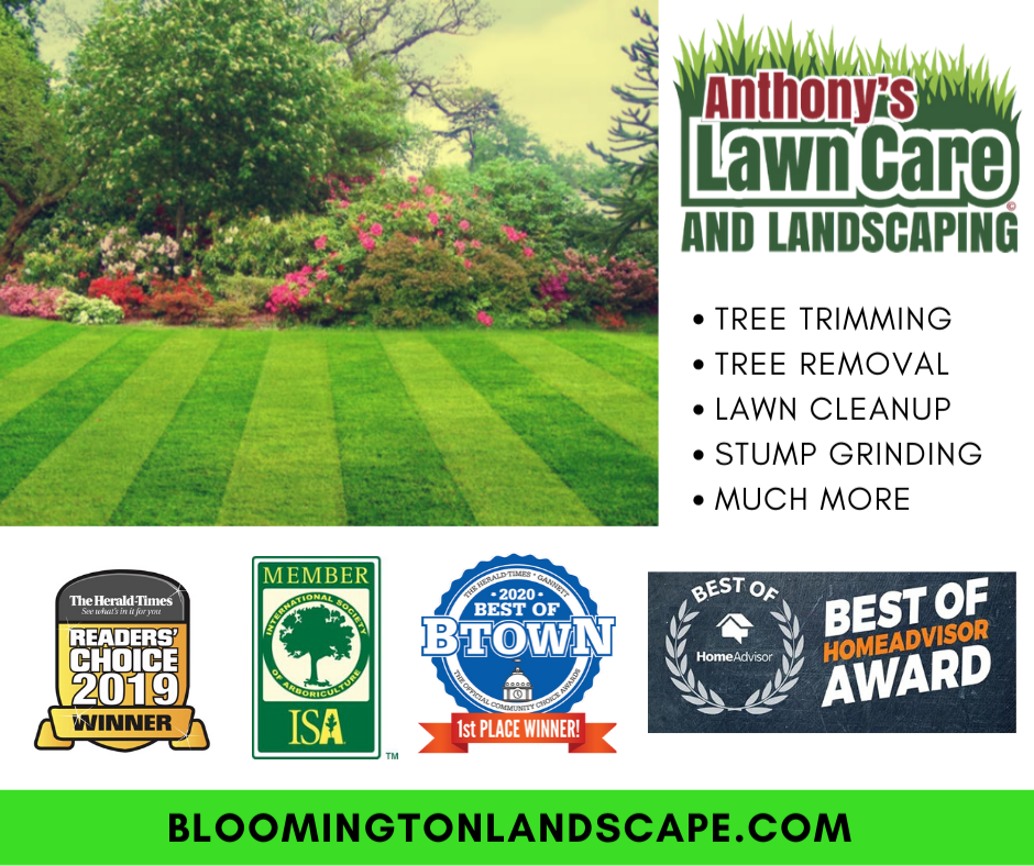 Anthony's Lawn Care & Landscaping